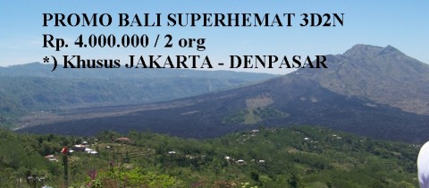 (PROMO !!!) Paket Super Hemat Domestik Bali  3D2N